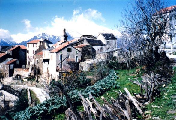 Altiani 2003